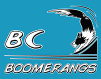 Redesigned BC Boomerangs Flyball Team T-shirt