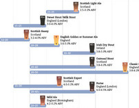 Beer Styles Infographic