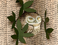 Altered Books: Owls