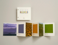Color Unlimited for Pallas Textiles