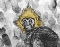 CREN Species Poster