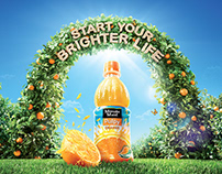 Minute Maid Pulpy : Orange Grove in the Bottle