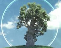 Träd, Grafik & Effekter
