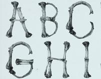 AUGE - T-Bone Type