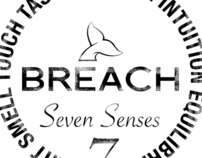 SOME BREACH GRAPH -2009