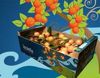 Isolella clementines