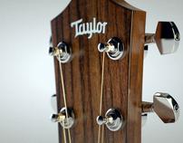 Talyor Acoustic