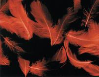 Plakaty filmowe i teatralne 2003-2010