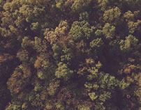 Arkansas from Above | Aerial Drone Photos