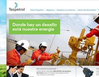 Techint TecPetrol - Web Site