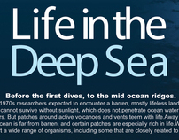 Life In The Deep Sea - 4 Page Layout