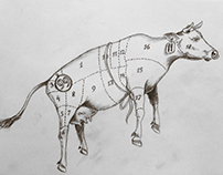 Esboços - Sketches