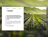 "Web Design for ""Carbon"""