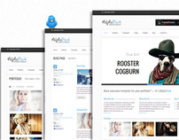 Alphapack Premium HTML5 CSS3 Template