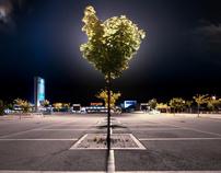Parking landscapes