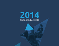 Design Innovation's Activity report 2014