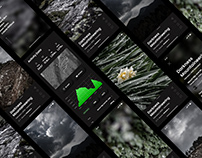 Vertical Swipe Photo Gallery App Prototype