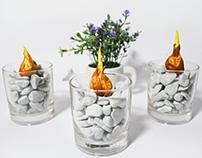 Project: Florium