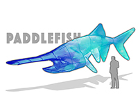 Paddlefish - Audubon Aquarium Proposal 2016