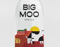 Fiesta Milk - Packaging Design