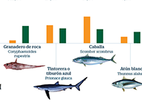 The benefits of sustainable fishing