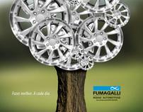 Fumagalli - Capa Balanço Social