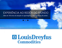 Institucional Website to Louis Droufus
