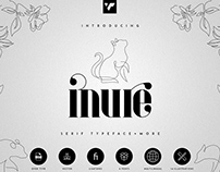 Inure Serif Typeface   Free Font Download