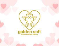 golden soft