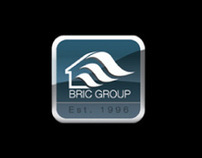 BRIC-Group - Global Perspective on Local Real Estate