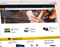 Online Campaigns for Newegg.com