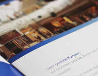 Blue Vision Brochure and business card