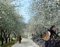 CONCEPT: fietsboomgaard