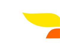 Brand Identity - Solver