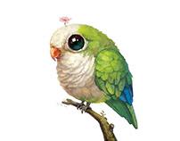 【Customization NO.63】——Psittaciformes