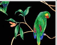 Parrots!