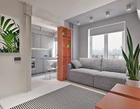 Small apartment/Dnepr