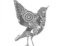 The pattern bird