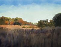 Landscape light study