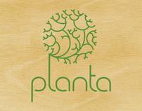 Planta Identity