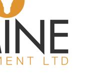 Lumine - Branding
