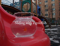 Sliding with a Goldfish