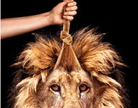Montage lion crinière