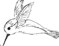 Hummingbird Festival Flyer - Reedy Creek Nature Center