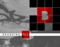 NDSBG logo