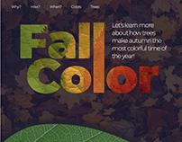 Children's website