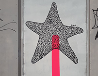 Starfish lollipop