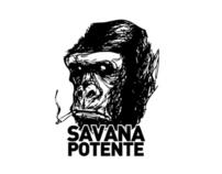 SAVANA POTENTE - TORINO