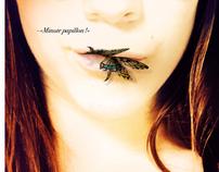 """Minute Papillon"""