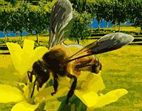 Natural Honey Farms